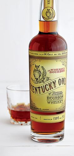 kentuck owl